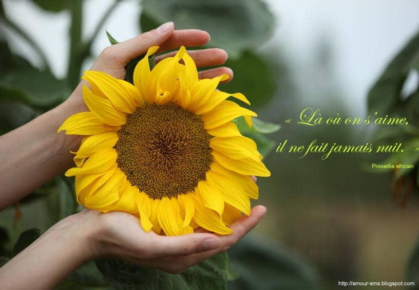 Beaux proverbe d'amour
