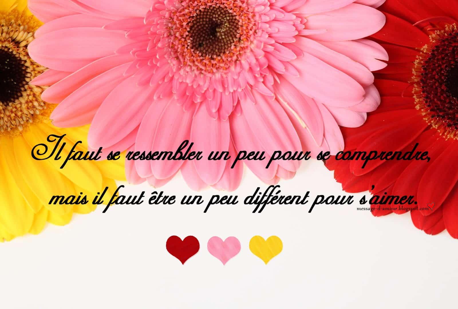 citations d'amour ( jolies cartes) - message d'amour