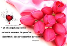 Love Quotes Message Damour