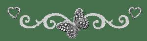 séparateur papillon