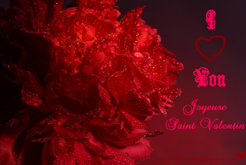 Belle carte Saint Valentin