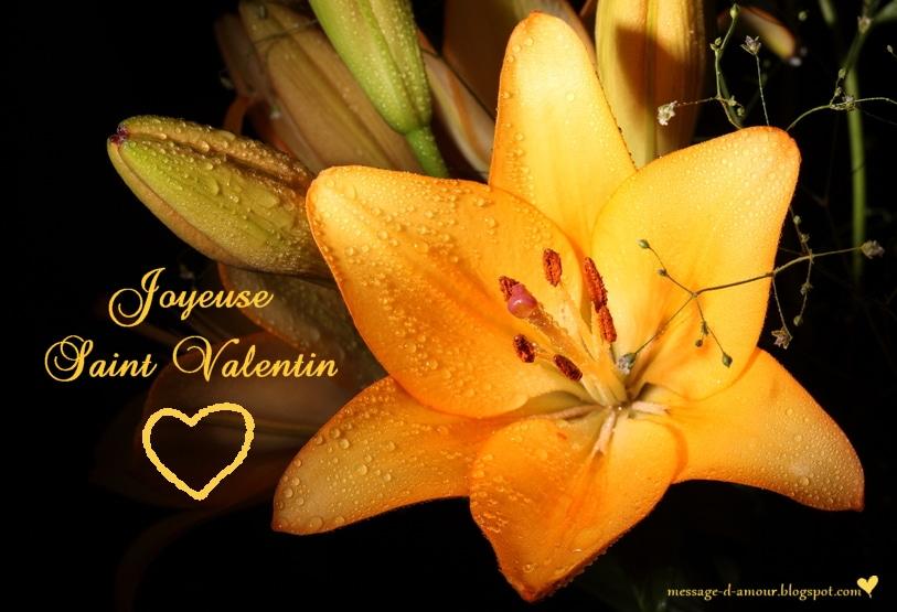 Carte Saint Valentin fleur et coeur
