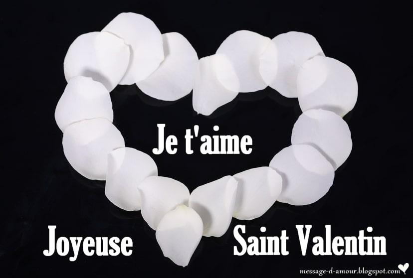 Je t'aime joyeuse Saint Valentin