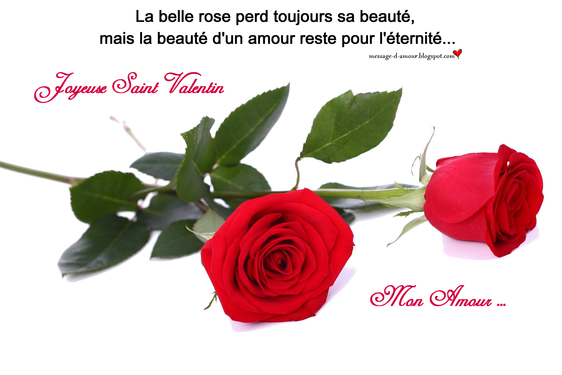 Carte Saint Valentin citation d'amour