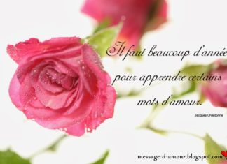 citation-saint-valentin-en-image