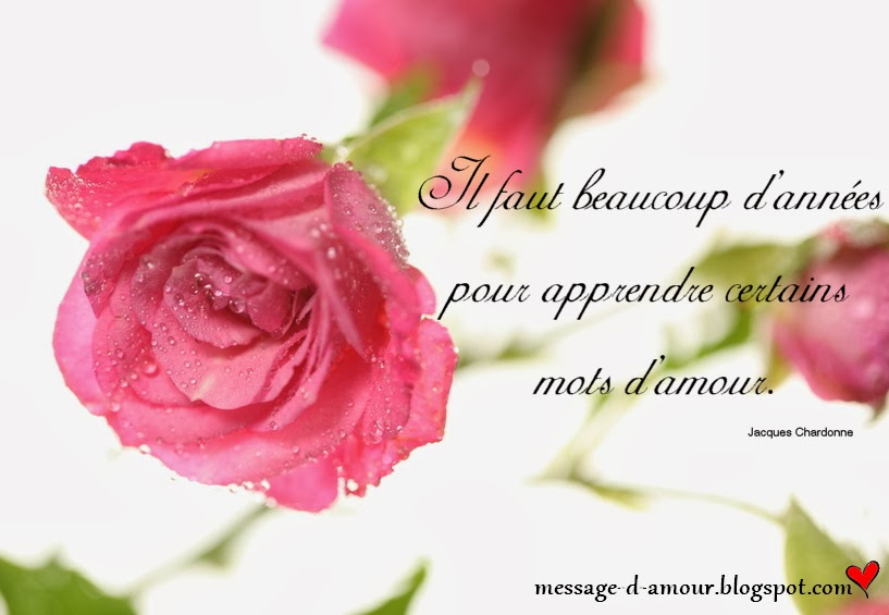 Citations Saint Valentin Message Damour