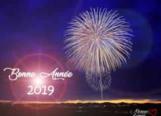 Bonne annee 2019 carte de voeux