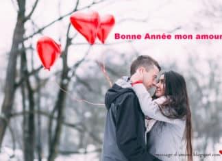 Bonne année mon amour