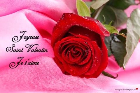 Poèmes Damour Pour La Saint Valentin Message Damour