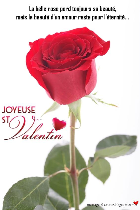 Pour La St Valentin Dites Lui Je T Aime Message D Amour