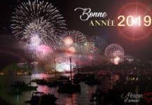 Bonne annee 2019 feux d'artifice