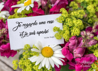 mot d'amour pour carte de bouquet de fleurs