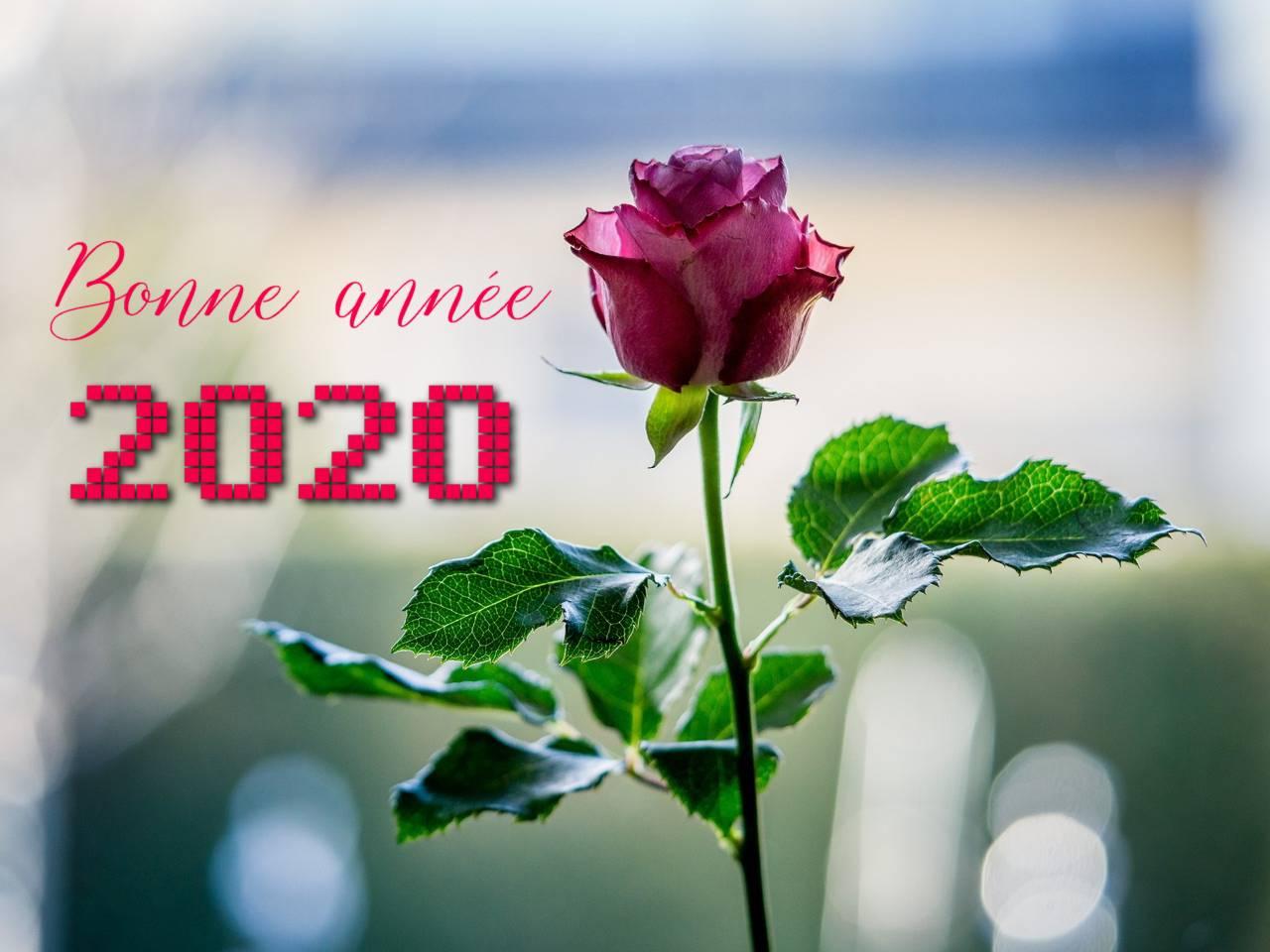 Bonne année 2020 rose