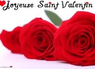 Jolie carte de fleurs pour Saint Valentin