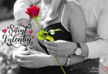 Rose rouge Saint Valentin