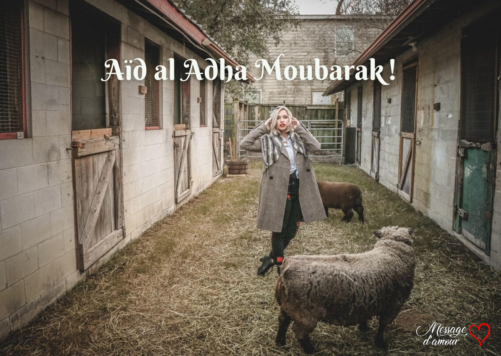Aid al adha moubarek photo
