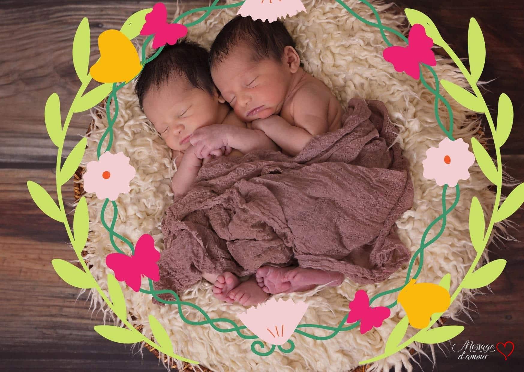 Carte faire-part de naissance jumeaux